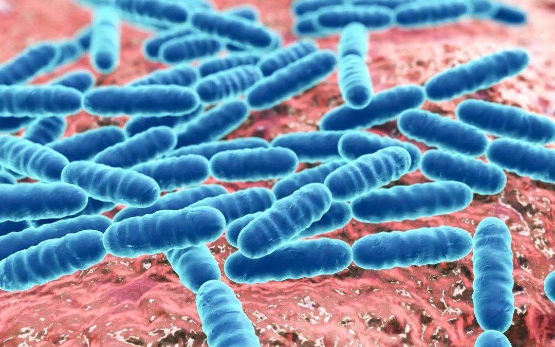 """Tukoksia ahmiva mikrobi ratkaisee putkiongelmat, väittää suomalaisyritys – Asiantuntija: """"kuulostaa ihan hyvältä"""" (Helsingin Sanomat 15.11.17)"""