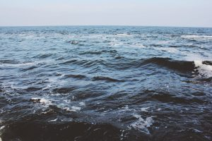 Jäteveden matka viemäristä Itämereen – miksi jätevedet aiheuttavat rehevöitymistä?